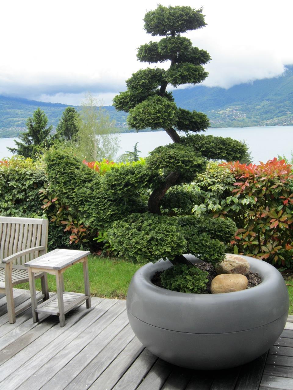R alisation de d coration d 39 espaces ext rieurs for Taille olivier en nuage